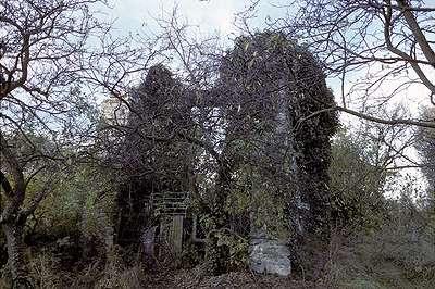 01 1983 : La face Sud du treuil dans la végétation.