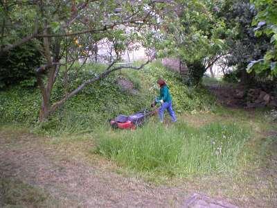 13 Entretien du site, tonte de l'herbe.